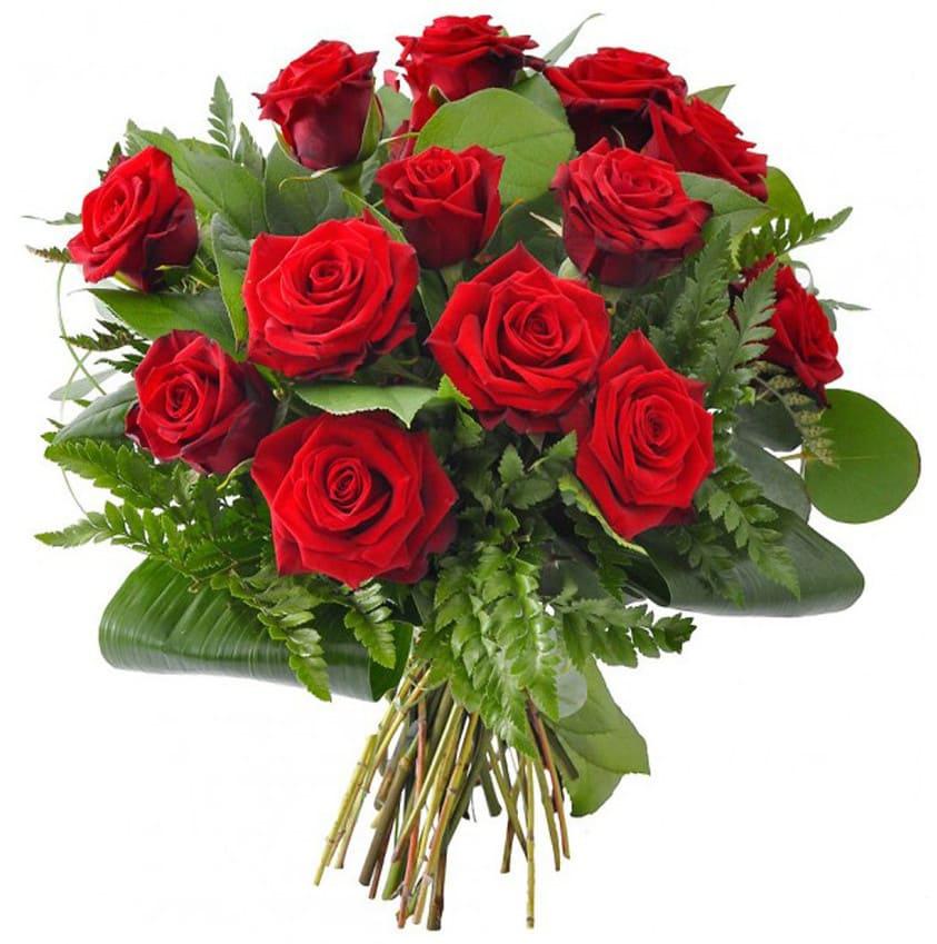 Rote Rosen Heute Video