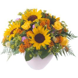 Sommerstrauss mit Sonnenblumen, Asclepia, Agaratum. Rosen