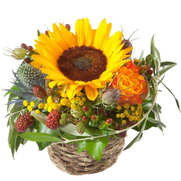 Sonnenblume, Rosen, Beeren, Grün