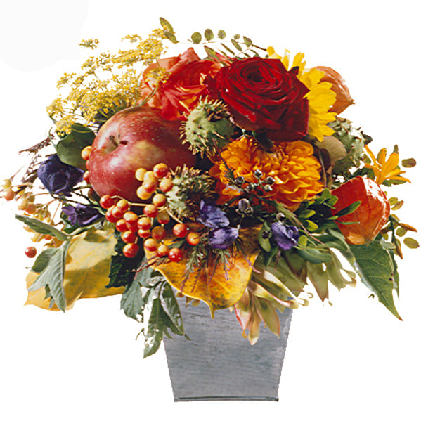 Herbstsinfonie mit Rosen, Beeren, Apfel, Herbstgrün.