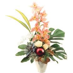 Edle Cymbidium mit Orchideenrispe, Cymbidium, Weihnachtsschmuck, Grün und Beiwerk