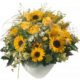 Sommerwiese mit Sonnenblumen, Rosen und feinem Beiwerk