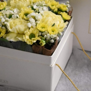 Floxbox Gelb sind frische Blumen in der Kartonbox. Trendy, frech, exklusiv und innovativ.